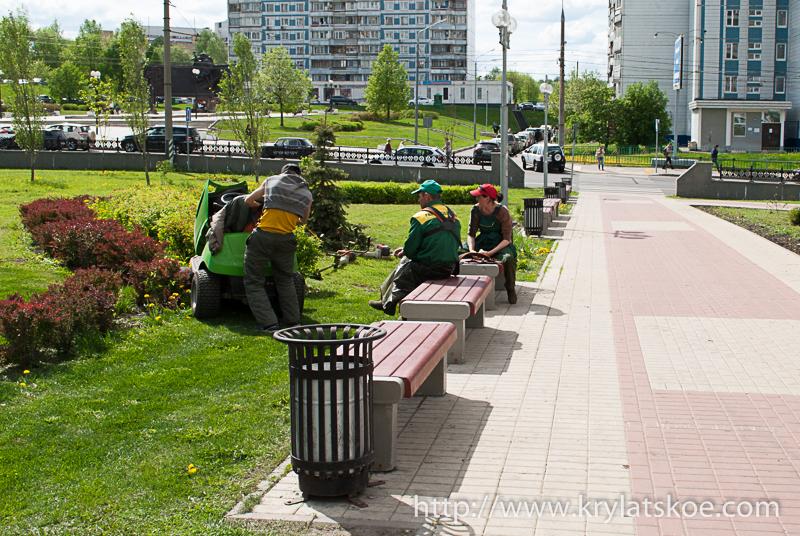 Правила покоса травы у жилых домов и автостоянок