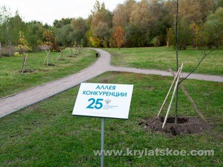 БЛИЦ: на территории ПИП Москворецкий появилась Аллея Конкуренции
