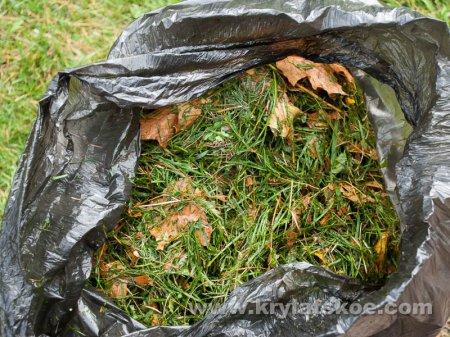 ФОТОРЕПОРТАЖ: уборка осенней листвы в Крылатском