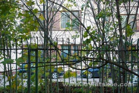 Часть парка Московрецкий в районе Кунцево сдана в аренду